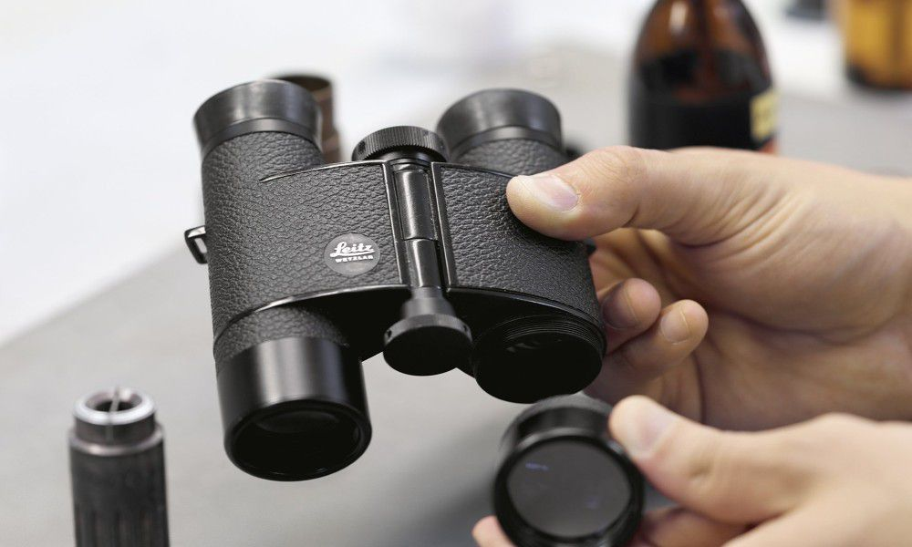 Best Budget Binoculars For Safari