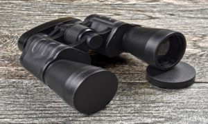 Best Binoculars for the Money of 2021