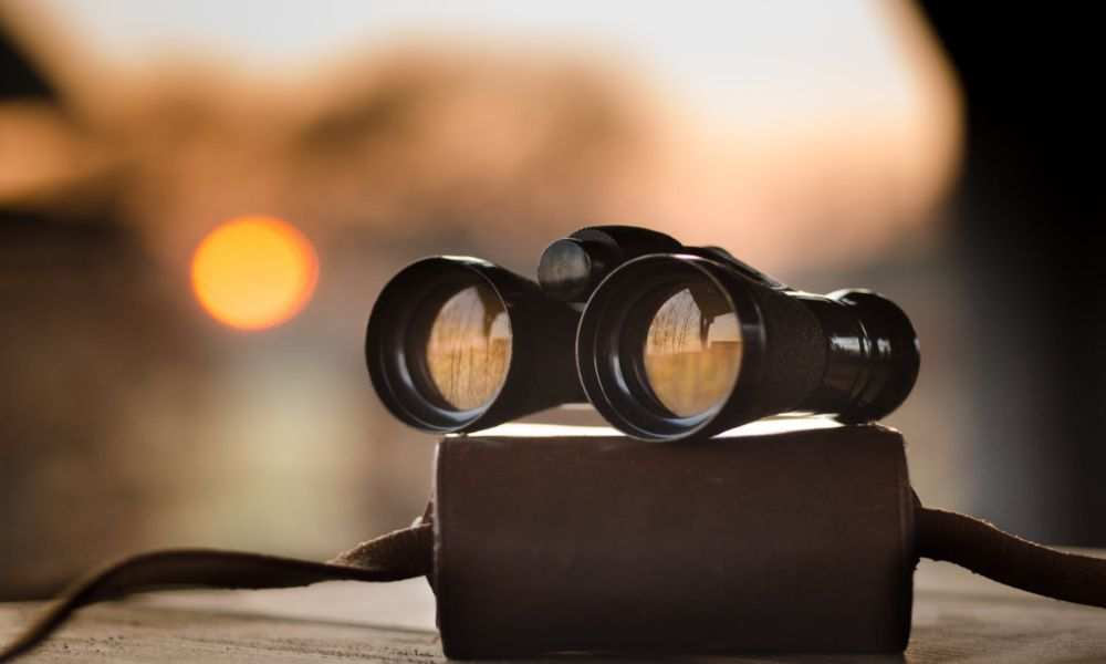 How to Focus Binoculars for a Pristine View