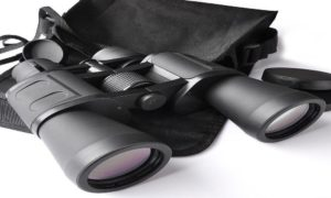 How to Adjust Binoculars to Have a Clear View